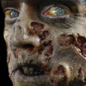 Tinsley Transfers ZOMBIE ROT - Film Quality Realistic 3D Prosthetic Makeup FX Transfer. Apply With Water.