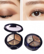 Terrece 3 Colours Professional Matte Eyeshadow Palette Smoky Cosmetic Naked Set Natural Eyeshade Makeup Kit Eye Shadow Powder with Mirror