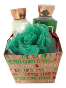 Bath & Body Works Merry Christmas Vanilla Bean Noel Shower Gel and Body Lotion Gift Set