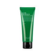 Benton Korean Cosmetics Aloe Propolis Soothing Gel 100ml + FREE MASK