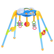 Ametoys Baby Activity Centre Play Gym Exercise Detachable Toy Kit with Music Playing for 0-1 Year Old Babies