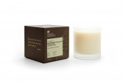Pangea Organics Canadian Pine with White Sage Candle