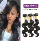 Charming 8a Malaysian Virgin Hair Body Wave 3 Bundles Virgin Human Hair 100% Unprocessed Soft Human Hair Extensions Bundles nature colour