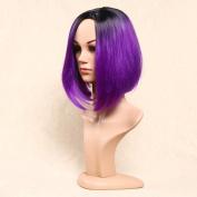 Secretgirl Fashion Women's Short Straight Wig Side Part Ombre Black to Purple Wigs New Hairstyles