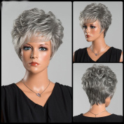 Fashion Heat Resistant Side Bang Short Layered Colour Mix Curly Synthetic Hair Costume Wig for Ladies