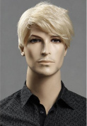 5I Fashion Men's Short Straight Layered Wig Side Swept Fringe Hairstyle High Heat Resistant Wigs Human Hair Wigs Natural Looking Wigs (Silver)+ 1 Free Wig Cap Z039