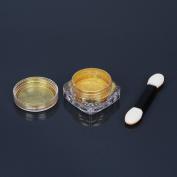 Mirror Chrome Nails Powder Gold Glittery Not Polish Nail Art Pigment H88
