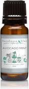 Barnhouse - 10ml - Avocado Mint - Premium Grade Frageance Oil by Barnhouse Blue