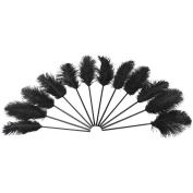 Black Ostrich Feathers On Plastic Stems