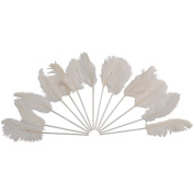 White Ostrich Feathers On Plastic Stems