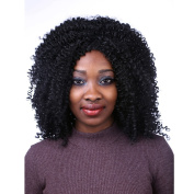 "19.6"" 50CM Synthetic Full Wig Medium Length Tight curl or Kinky curly Synthetic Hair Wig for Black Women 1B# no bangs"