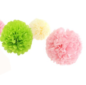 12pcs 20cm 30cm Diy Birthday Party Hanging Tissue Pom Poms Wedding Supplies Baby Shower Nursery Room Paper Flowers for Wall Decorations Cream Pink Lime Green