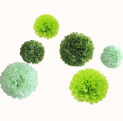 12pcs 20cm 30cm Diy Tissue Paper Flowers for Wedding Party Pom Pom Set Decorations Outdoor Indoor Baby Shower Birthday Celebration Light Lime Dark Green
