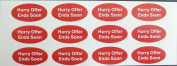 Minilabel Promotional Stickers, Hurry Offer Ends Soon, 40X20Mm Oval Selfadhesive Postal Labels