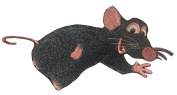 Remy rat ratatouille patch iron onembroidered patches applique sew on