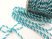 Roll of 25 yards Turquoise Blue/White 2mm Braided Twist Cord Trim (T116-Turquoise Blue) US Seller Ship Fast