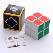 2x2x2 Frosted Cube - Mind games Rubik Cube - Educational toys