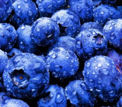 Blueberry Type Flavour Vapour - 120ml
