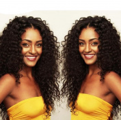 Futuretrend Fashion Black Colour Afro Curly Hair Heat Resistant Black Kinky Curly Wig Synthetic Wigs For Women