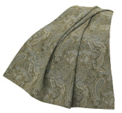 HiEnd Accents Chenille Paisley Throw