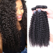 BLY Hair 4 Bundles 8 10 12 36cm 100% Unprocessed 6A Malaysian Virgin Kinky Curly Human Hair Weaves Deep Curly Hair Bundles Natural Black