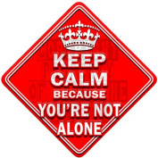 KEEP CALM because YOU'RE NOT ALONE novelty baby on board car window sign
