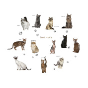 Winhappyhome Cute Cats Wall Art Stickers for Bedroom Living Room Coffee Shop Background Removable Decor Decals