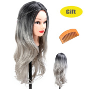 Beauty Star 60cm Black & Grey Curly Wigs - Natural, Heat Resistant and Full Wavy Wigs for Women, with Free Wig Comb