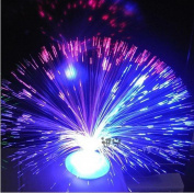 Supply EU Colour Changing Fibre Optic Fountain - Night light Calming Lamp
