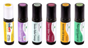 Plant Therapy Top 6 Pre-diluted Essential Oil Roll-on Set. Ready to Use! Includes