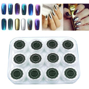 AutumnFall 12 Colours Nail Glitter Powder Shinning Nail Mirror Powder Makeup Art DIY Chrome Pigment With Sponge Stick