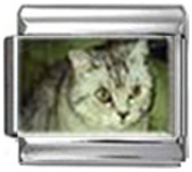 CAT GREY WHITE Photo Italian Charm 9mm Link - 1 x CA119 Single Bracelet Link