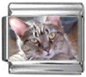 CAT GREY WHITE Photo Italian Charm 9mm Link - 1 x CA118 Single Bracelet Link