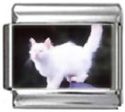 CAT WHITE FLUFFY Photo Italian Charm 9mm Link - 1 x CA069 Single Bracelet Link