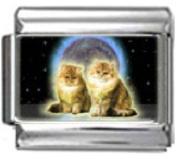 KITTENS IN SPACE Photo Italian Charm 9mm Link - 1 x CA014 Single Bracelet Link