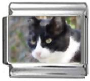 CAT BLACK WHITE Photo Italian Charm 9mm Link - 1 x CA077 Single Bracelet Link