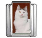 CAT GREY WHITE Photo Italian Charm 9mm Link - 1 x CA084 Single Bracelet Link