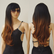 "28"" / 70cm Heat Resistant Synthetic Wig Japanese Kanekalon Fibre Full Wig with Bangs Long Straight Full Head+Stretchable Elastic Wig Net,Ombre Colour Black to Brown"