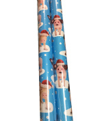 OINK OINK ~ Heavyweight PIG Gift Wrap ~ Wrapping Paper