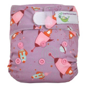 Sweet Pea Newborn All-In-One Nappy, Rockets