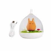 MEXUD USB Night Cute LED Cage Lamp Portable Touch Sensor Light Baby Kids Bedroom Sleep