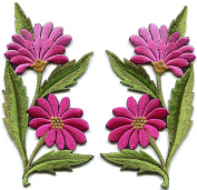 Pink fuscia taffy daisies pair flowers embroidered appliques iron-on patches new S-1296