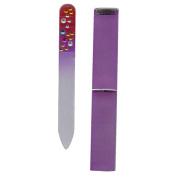 Diamante Handbag Size Mini Glass Nail File in Hard Case - Purple