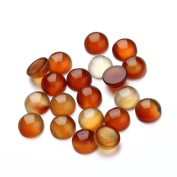 12mm Red Agate Round Cabochon CAB Flatback Semi-precious Gemstone Ring Face Wholesale 20pcs
