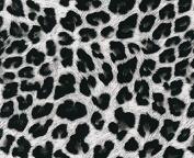 Hydrographic Film - Water Transfer Printing - Hydro Dipping - cheetah print - 1 Metre