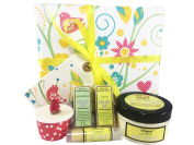 Natures Soap Gift Wrapped Birthday Box Set / Bath Truffle / Body Butter / Lip Balm / Goats Milk Soap