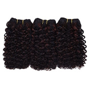Afro Kinky Curly Hair Wefts (F1B/33) 3 Pieces 20cm 2 Tone Ombre Blended Hair Weaves