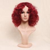 Secretgirl Fashion Short Fluffy Afro Curly Wig for Women Red Cosplay Full Wig