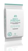 System JO Personal Cleansing Wipes, Minty Fresh, 30 Count