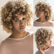 AISI HAIR Synthetic Short Curly Hair Wigs Two Tone Colour Brown Blonde Colour Afro Curly Wigs for Black Women